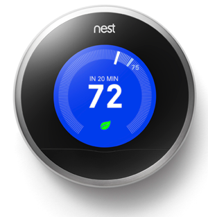 Nest-cooling-with-leaf